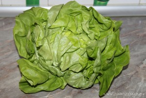 zelena salata i narandze